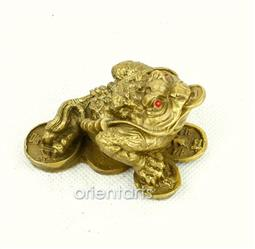Brass Money Frog on Coins